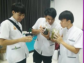 สาขาวิชาการแพทย์แผนไทยประยุกต์ ทำการวิจัยเจล ด้วยการสกัดสารจากแตงกวา และใบบัวบก