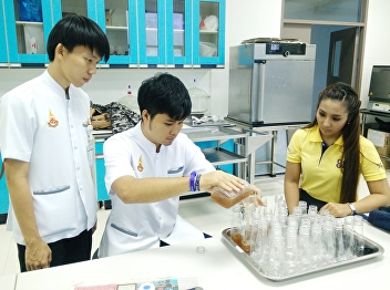 4th Year Research & Development
