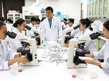 Practical examination, identity examination of Thai herbal medicine powder Pharmacy course