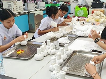 Making a dry herbal compress for teaching in Thai pharmaceutical courses Helps to relieve pain, swelling, inflammation of muscles and tendons. Muscle relaxation And increase blood circulation